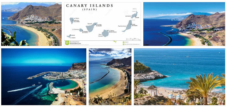 Canary Islands: Political System