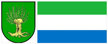 Sierra Leone flag and coat of arms