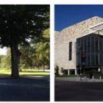 Study Abroad in University of California, Davis